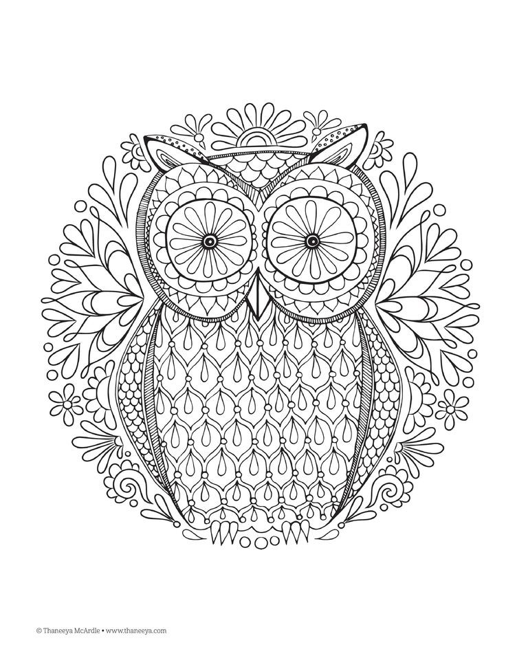 Doodle hour library program zentangle and adult colouring Easy coloring books for adults