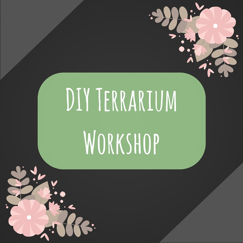 DIYmini-Terrariums